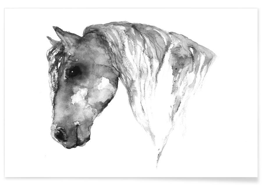 Grey Horse Watercolour Poster