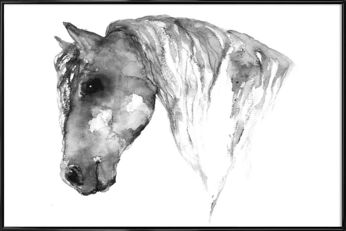Grey Horse -Bild mit Kunststoffrahmen