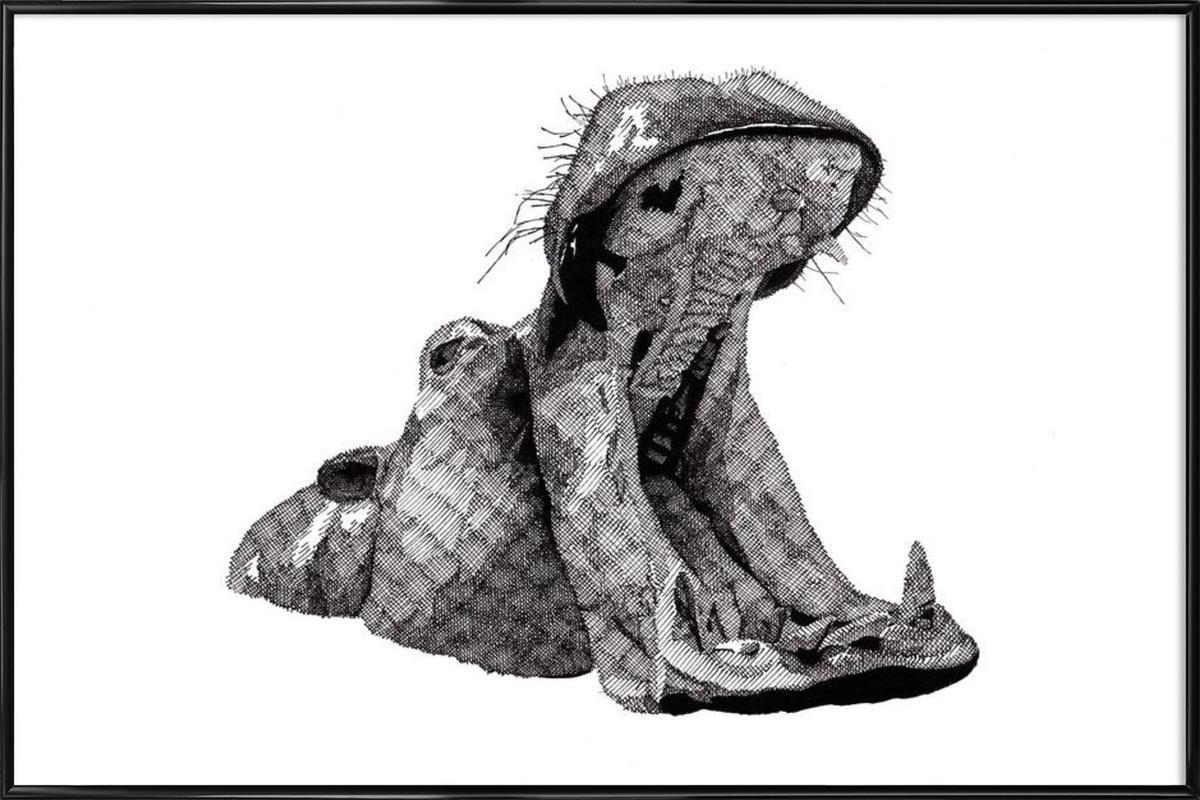 Hippo Framed Poster