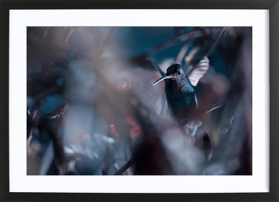 50 Hz - Fabien Bravin -Bild mit Holzrahmen