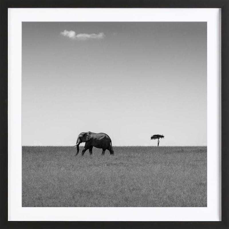Elephant And The Friendly Cloud - Ali Khatatw -Bild mit Holzrahmen