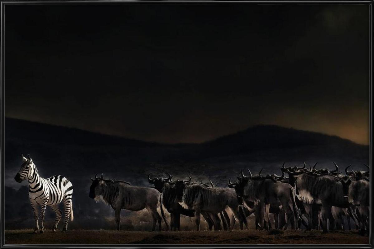 An Evening in Kenya - Piet Flour -Bild mit Kunststoffrahmen