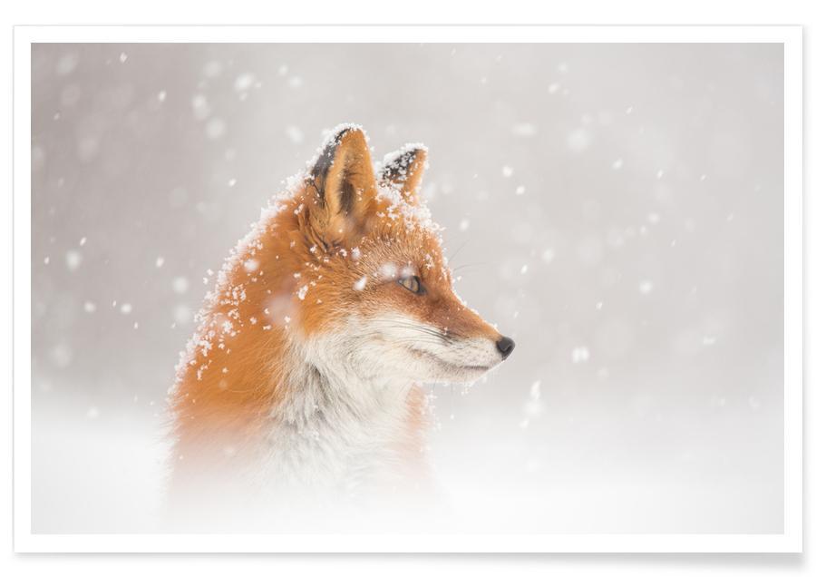 Snow is fallinga - Denis Budkov -Poster