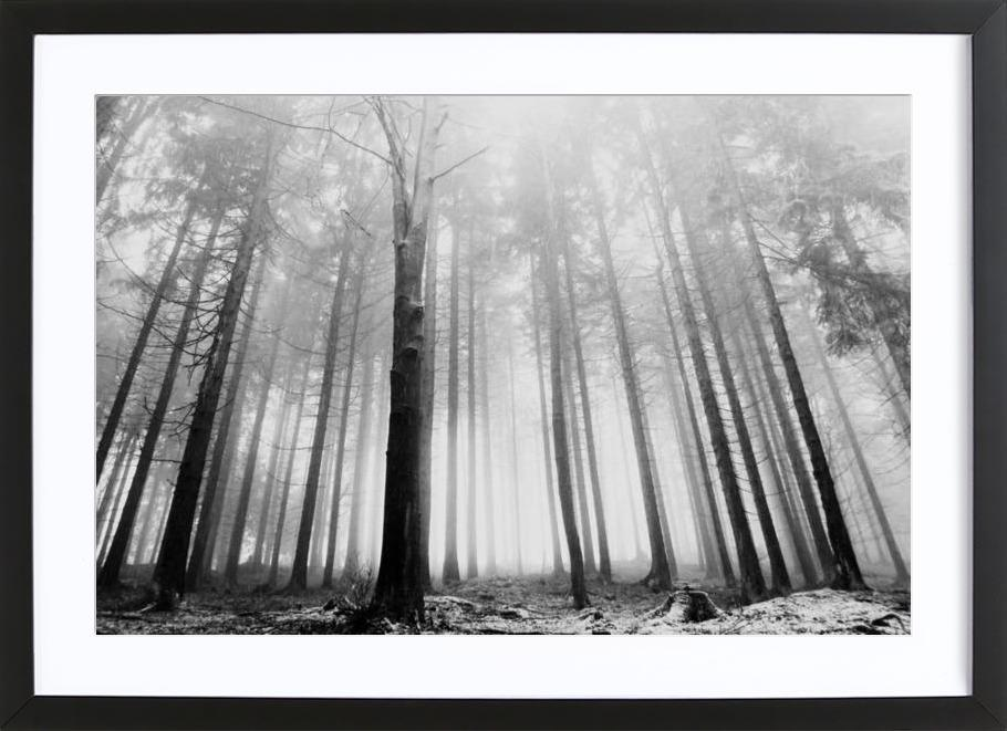 Within Reach Framed Print