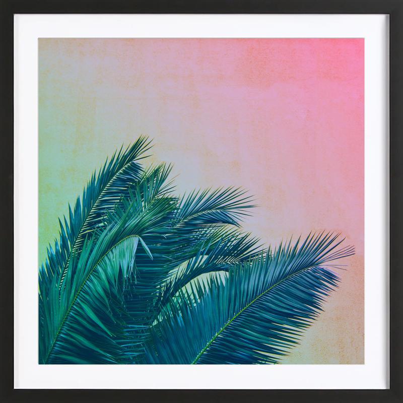 Palm III Framed Print