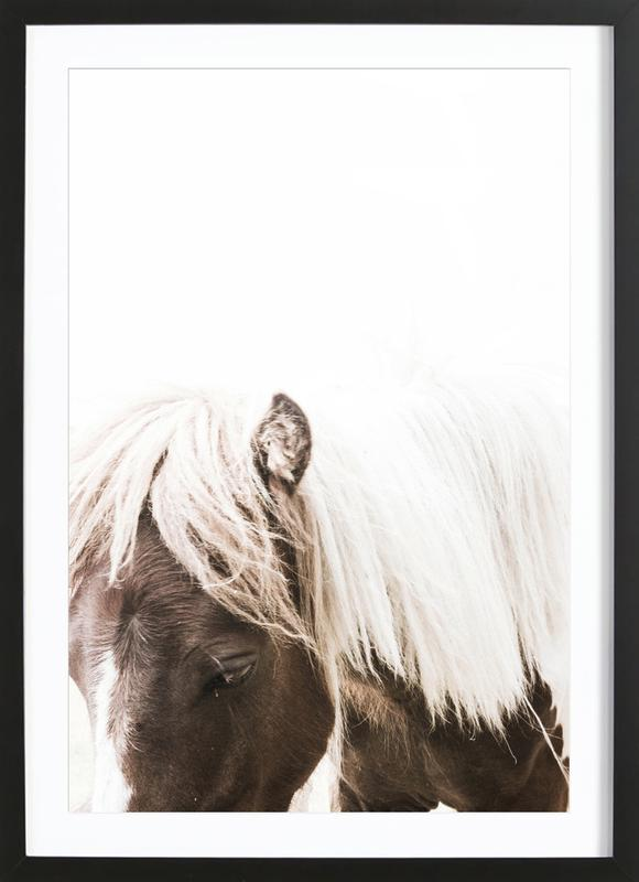 Horse II affiche sous cadre en bois