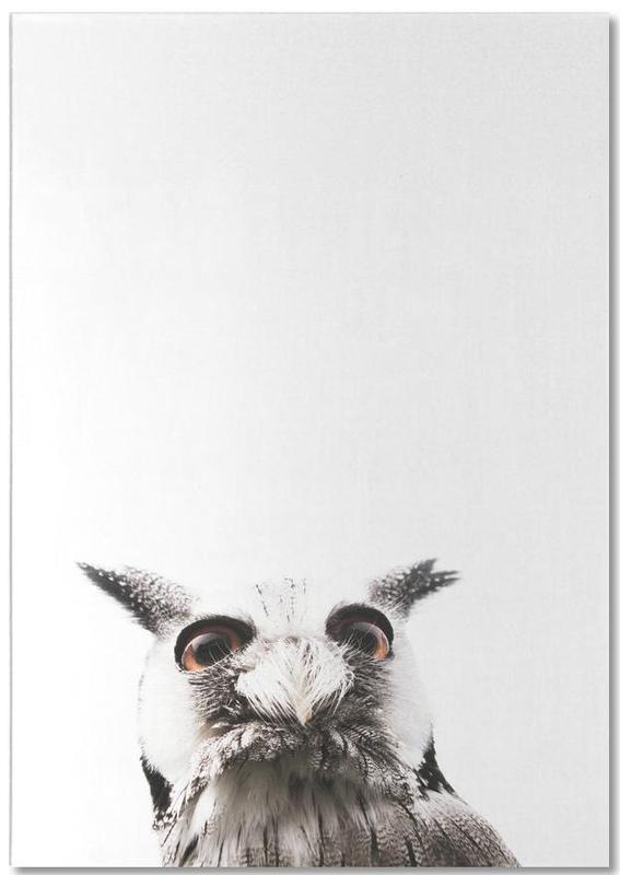 Lil Owl bloc-notes