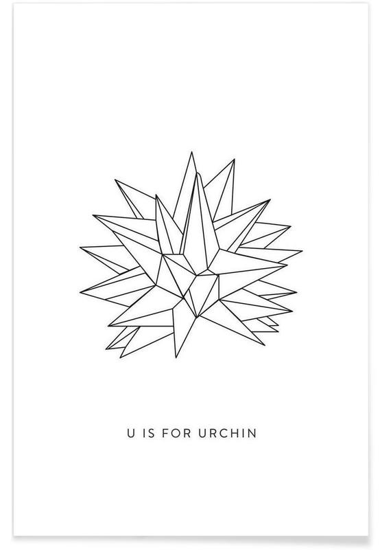 Origami Urchin Poster