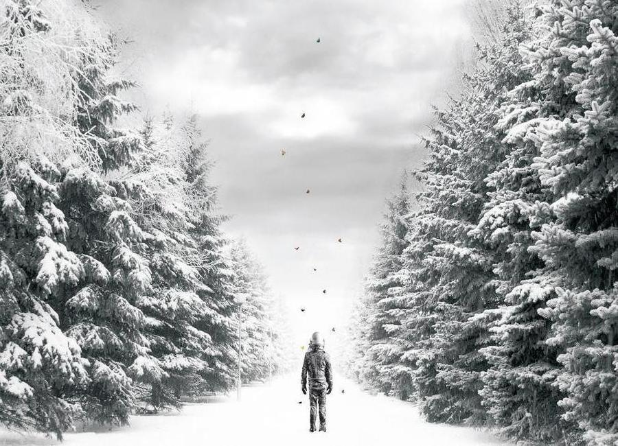 The Path -Leinwandbild