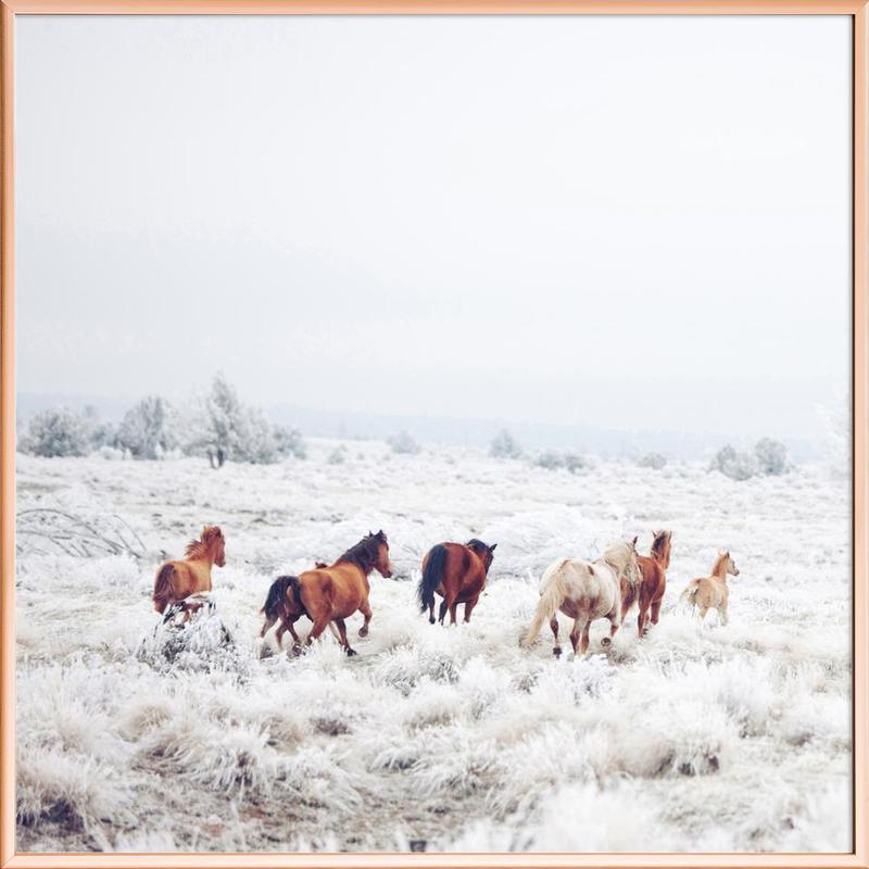 Winter Horses -Poster im Alurahmen