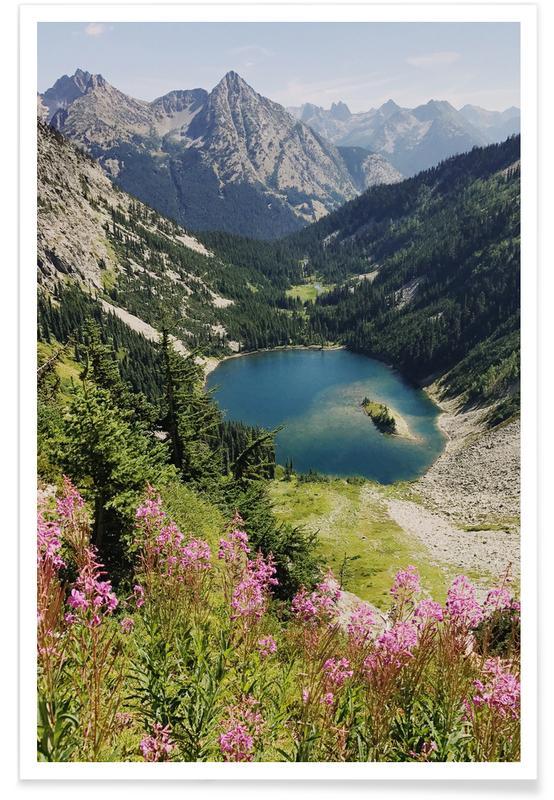 Cascade Summer Wildflowers -Poster