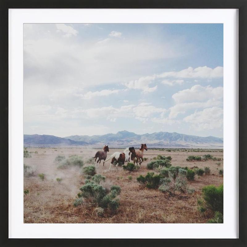 Running Horses ingelijste print