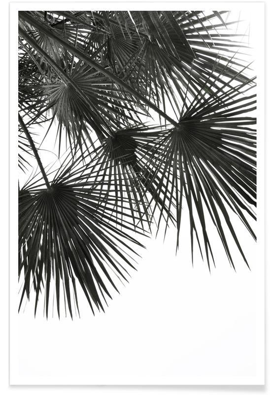 Endless Summer - Wind Poster