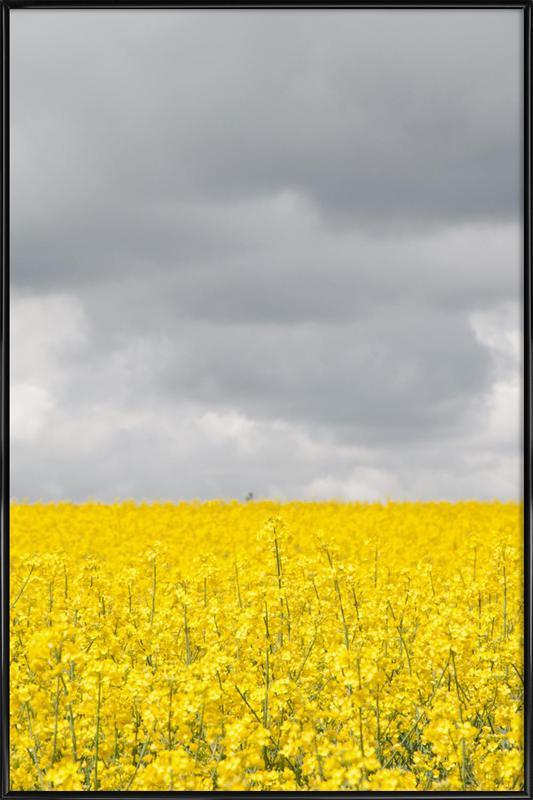 Grey Sky Meets Yellow Fields -Bild mit Kunststoffrahmen