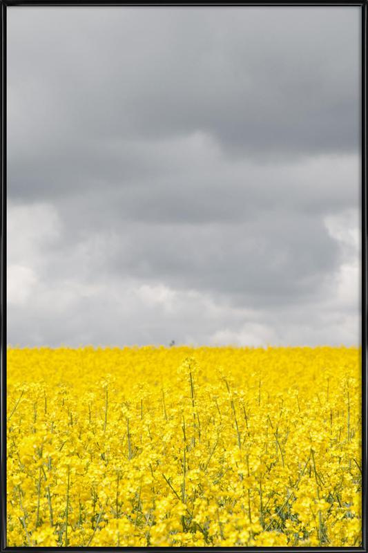 Grey Sky Meets Yellow Fields Framed Poster