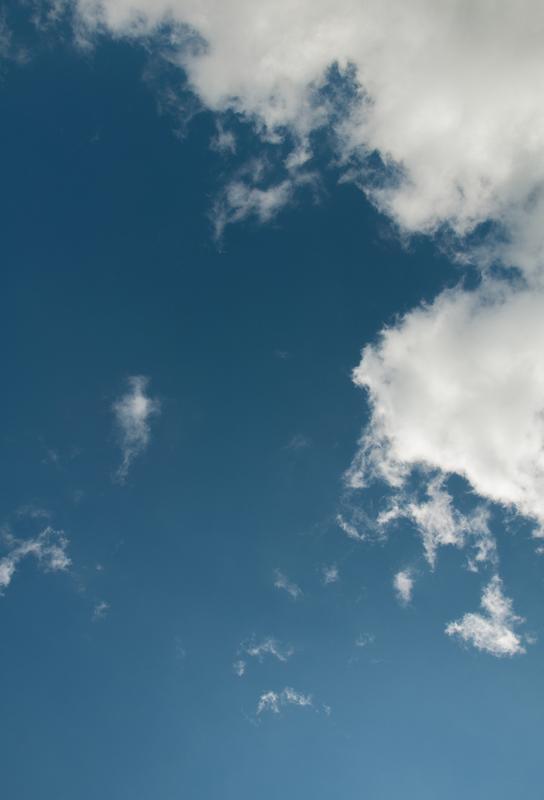 Sky Diving Acrylic Print