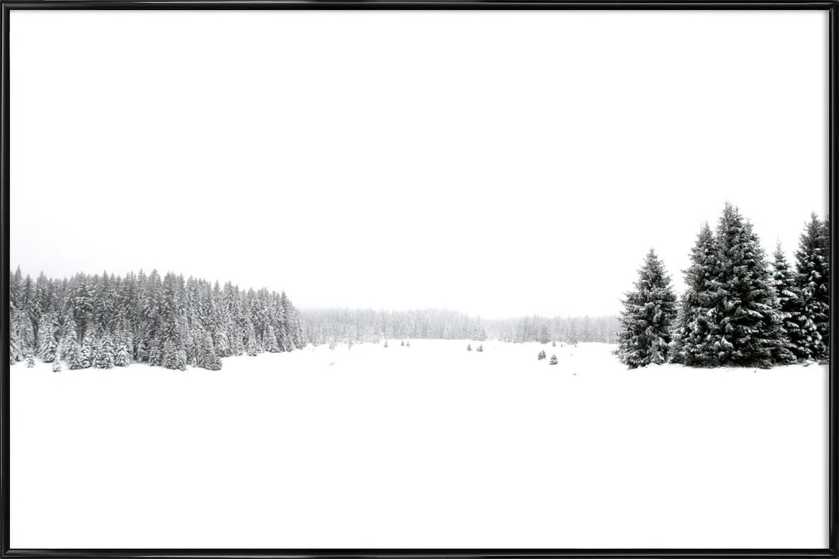 White White Winter Framed Poster