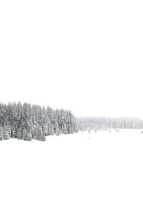 White White Winter 1/2 Acrylic Print