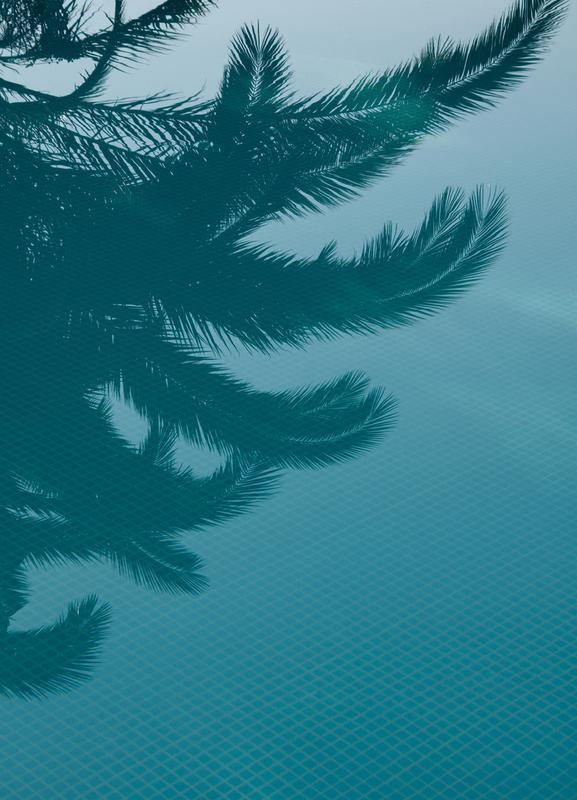 Palms In The Pool -Leinwandbild