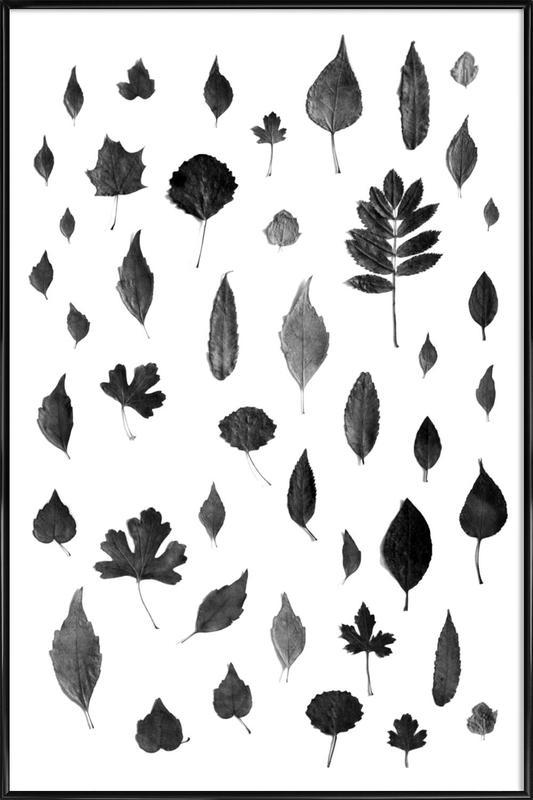 Signs Of Autumn- Black Framed Poster