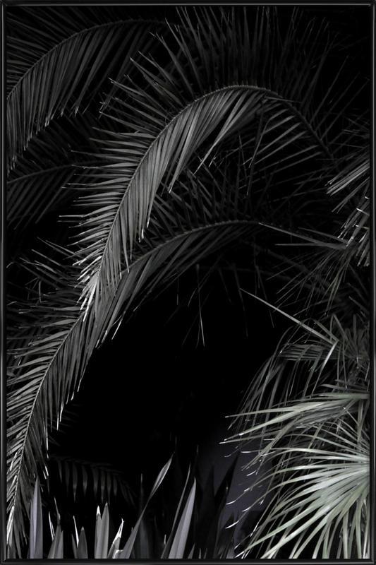 Tropical Garden 1/5 Framed Poster