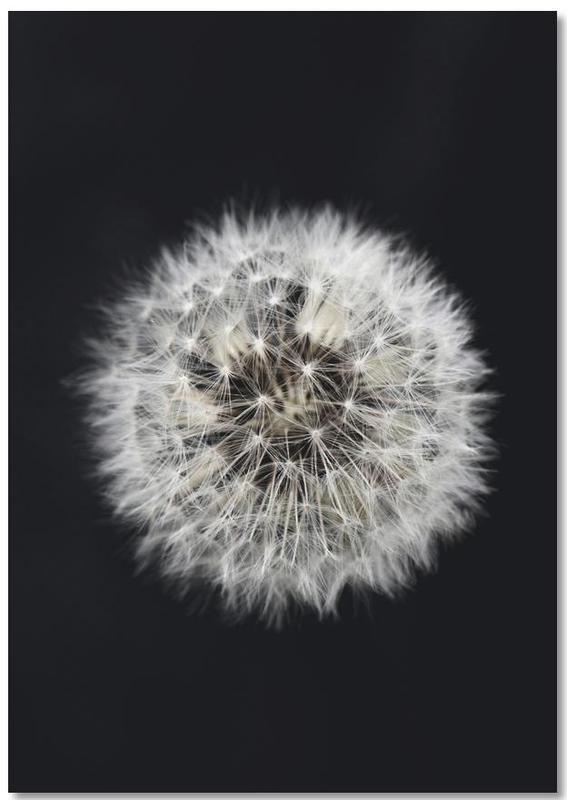 Black and White Dandelion -Notizblock