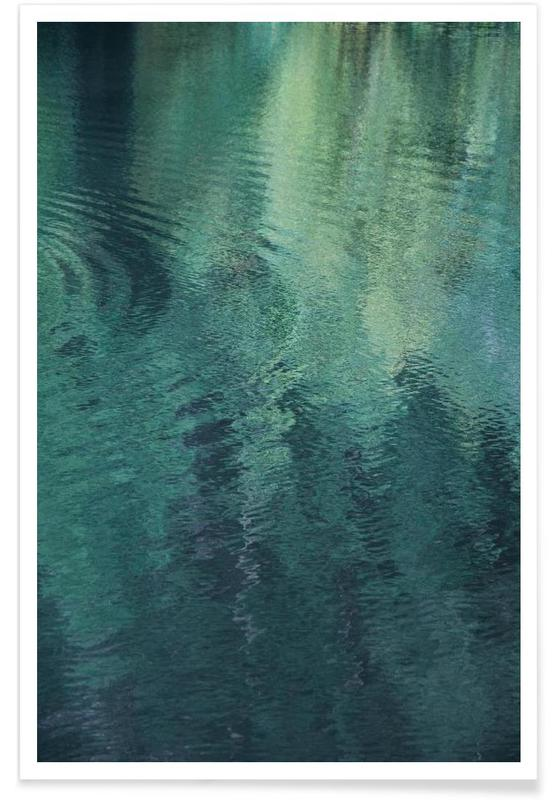 Forest In The Lake affiche
