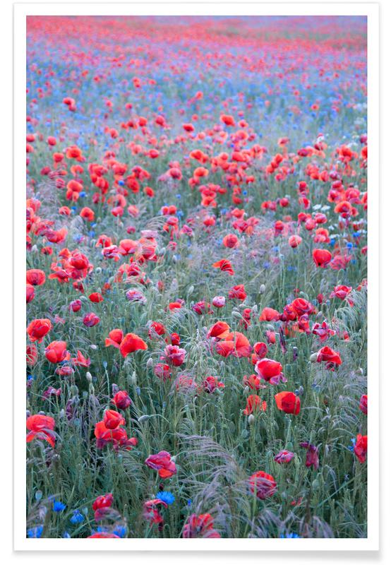 Poppy Seed Heaven poster