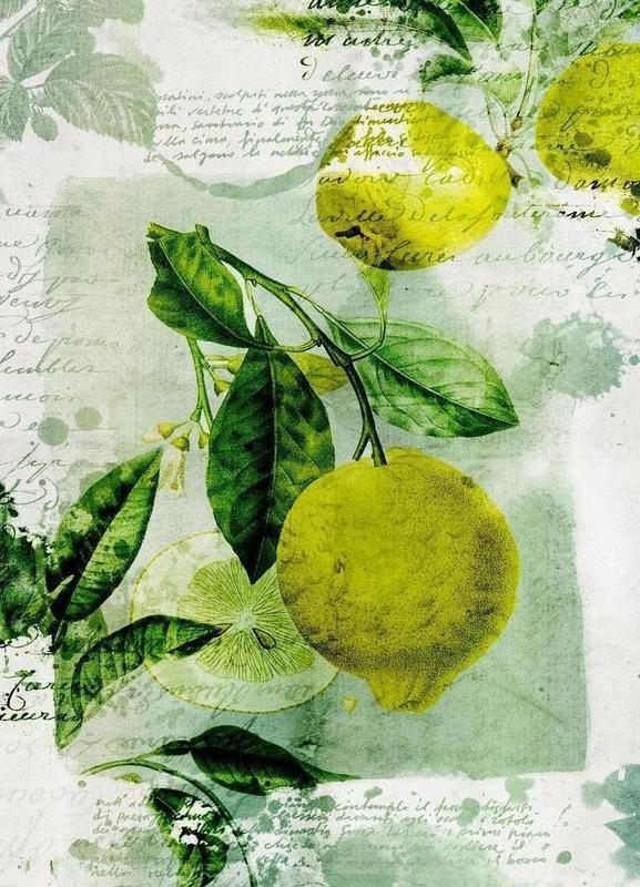 Botanic 1 Canvas Print