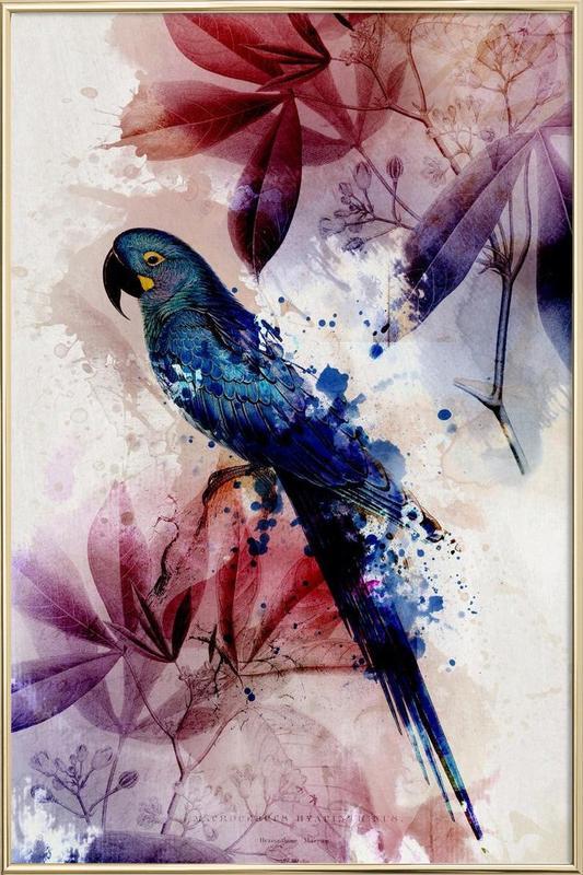 Botanic 2 -Poster im Alurahmen