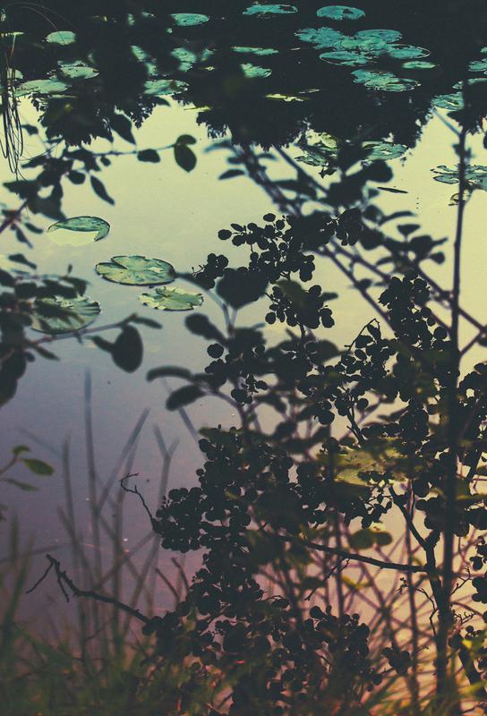 The Afternoon Lake tableau en verre
