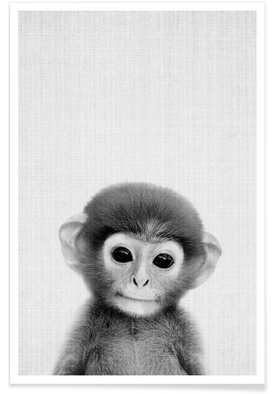 Affe-Schwarz-Weiß-Fotografie -Poster