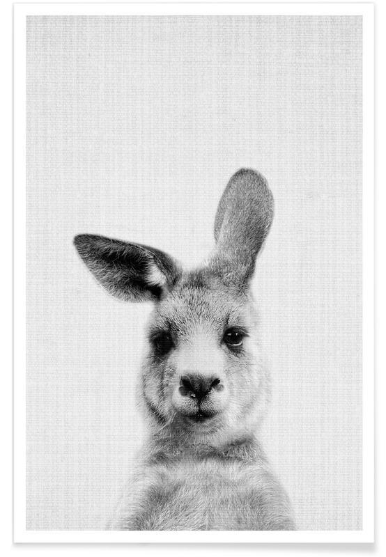 Kängurubaby-Schwarz-Weiß-Fotografie -Poster