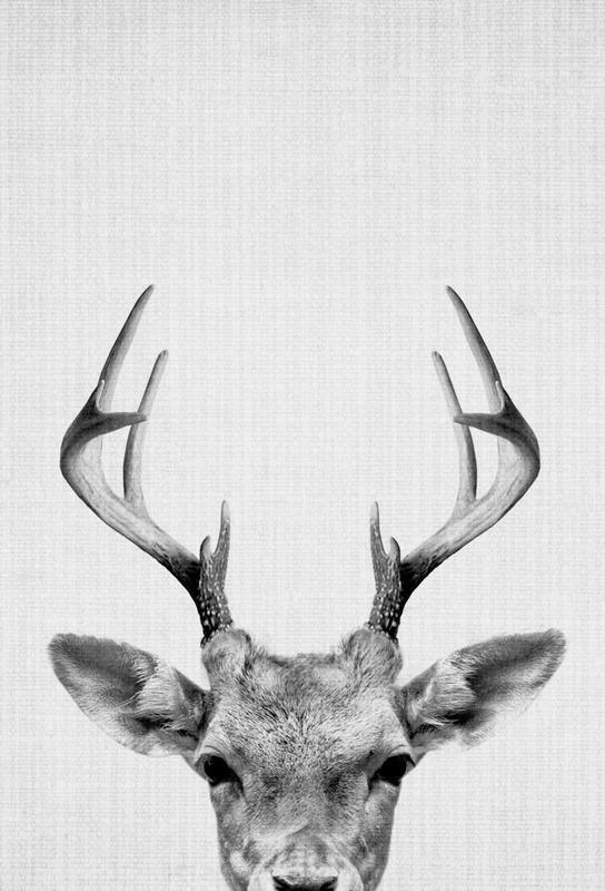 Print 38 -Alubild