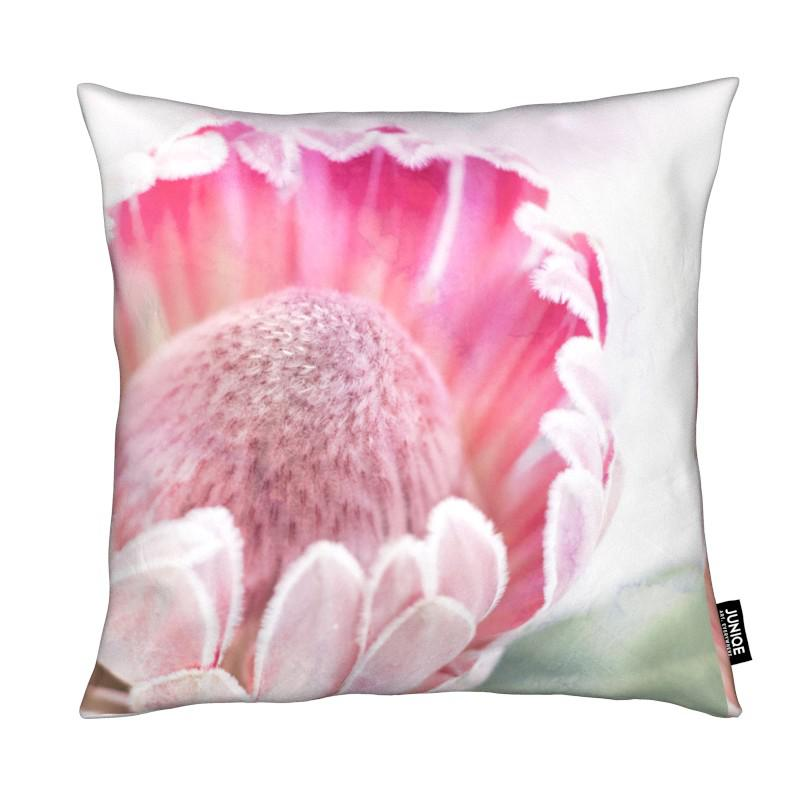 Print 400 coussin