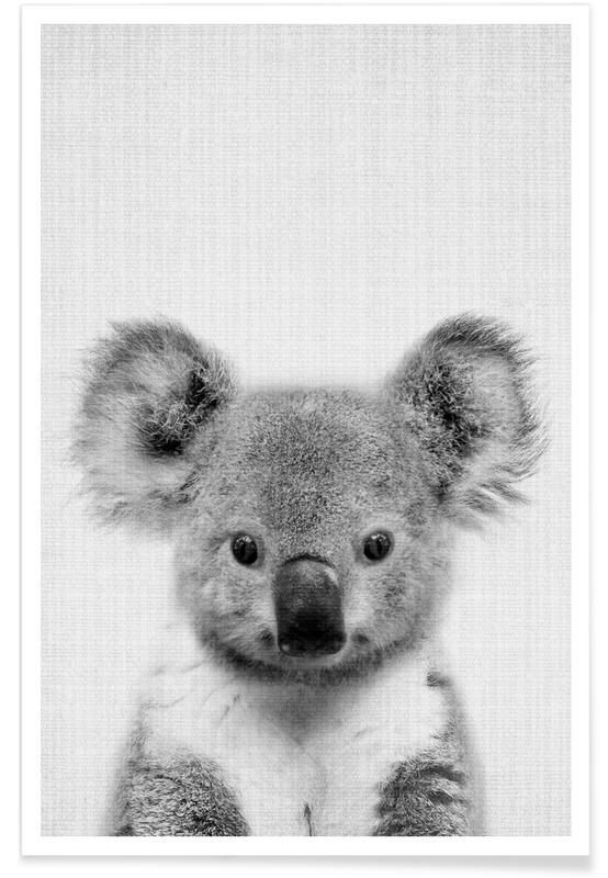 Koala-Schwarz-Weiß-Fotografie -Poster