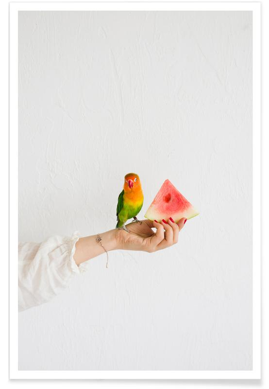 Watermelon And Parrot affiche