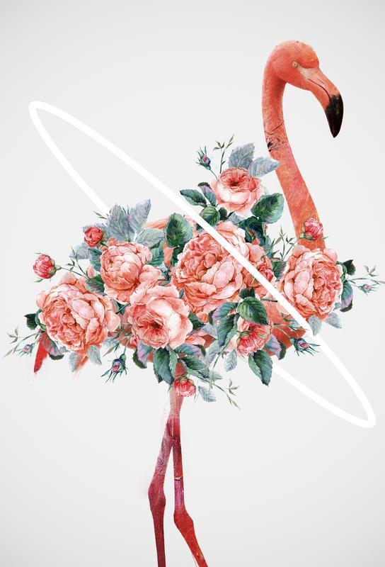 Flamingo Aluminium Print