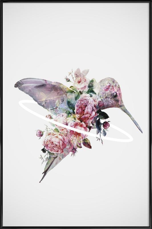 Kolibri -Bild mit Kunststoffrahmen