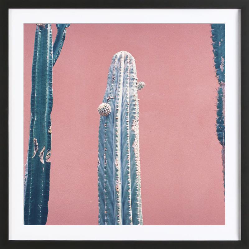 Into the Tropics (Cactus) Framed Print