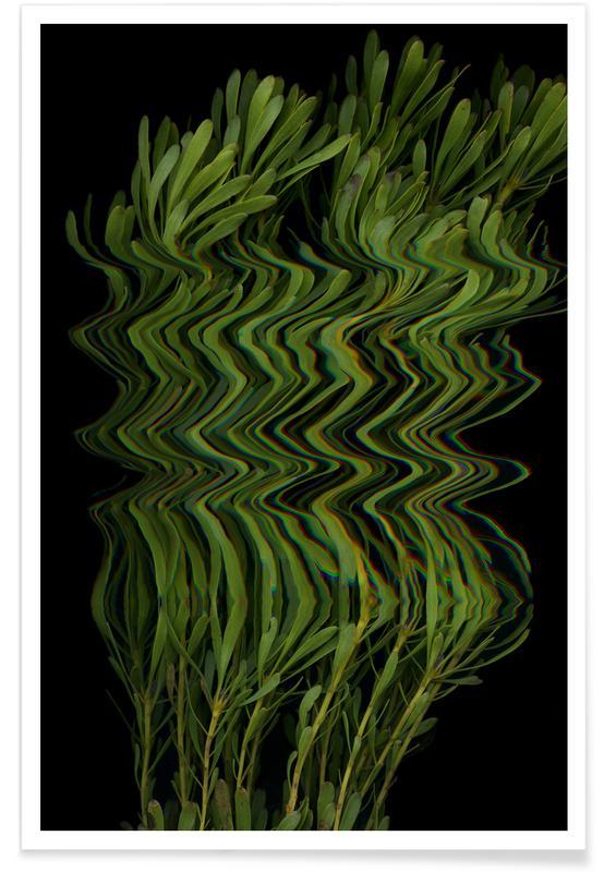 Flora III Poster