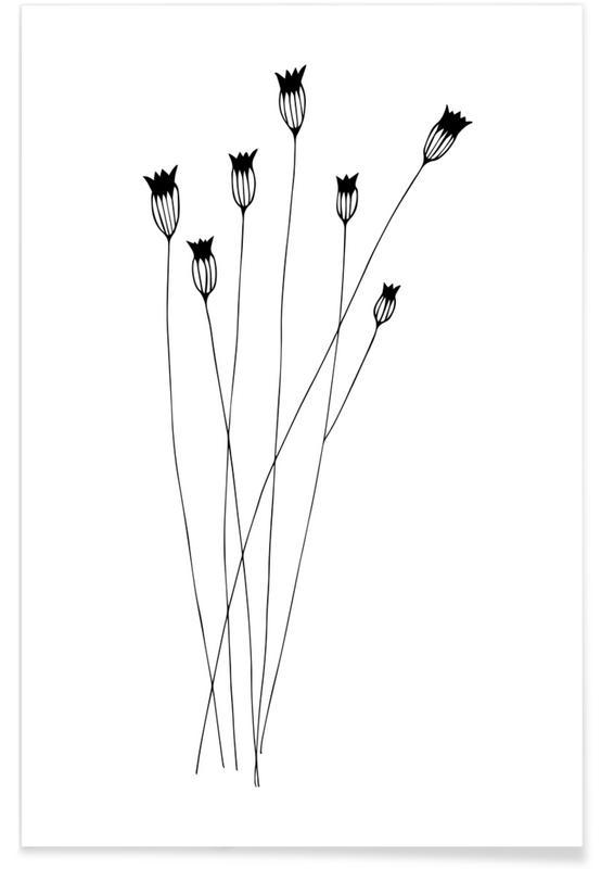 Cornflowers Poster