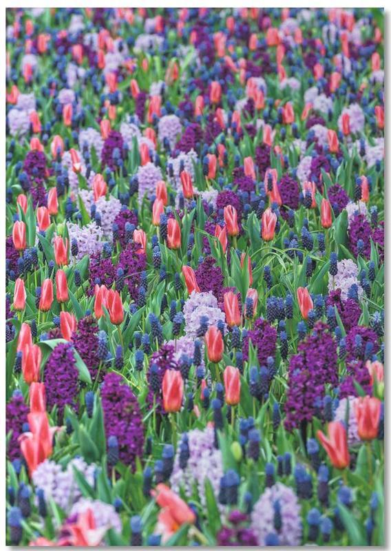 Tulip Field Purple -Notizblock