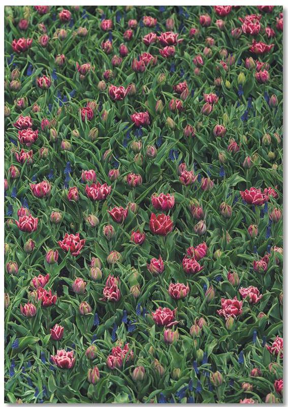 Tulip Field Pink -Notizblock