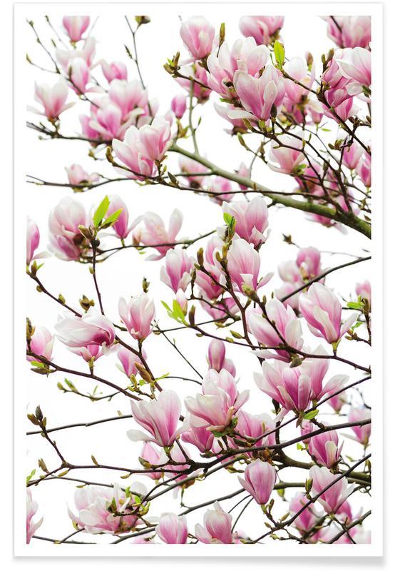Magnolia Pink 1 Poster
