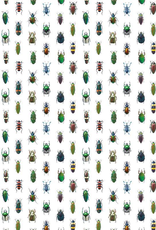 Beetles -Acrylglasbild