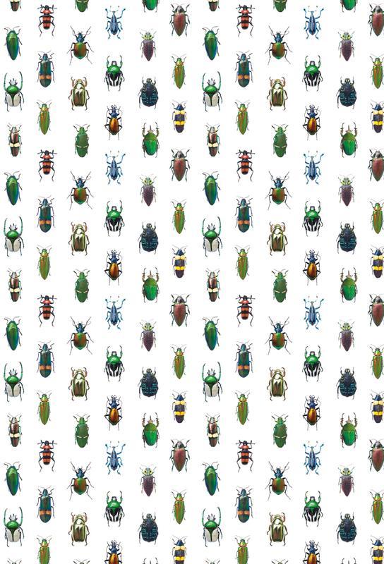 Beetles Aluminium Print