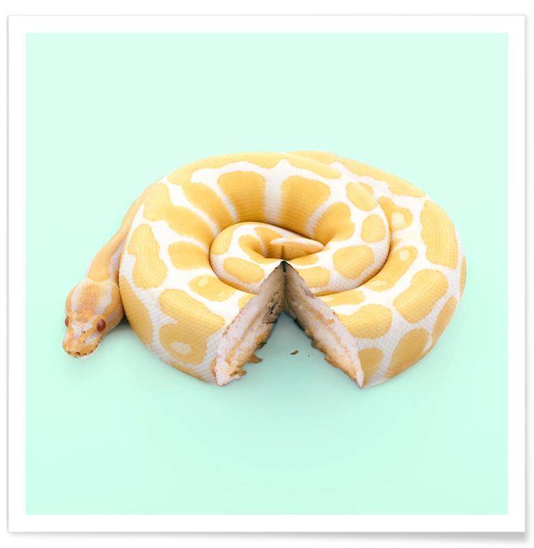 Snake Cake Poster