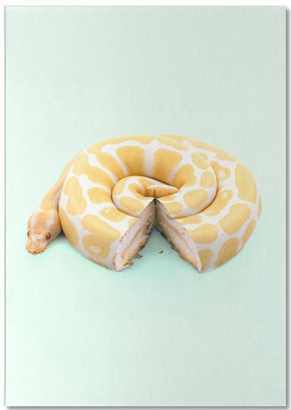 Snake Cake Notepad