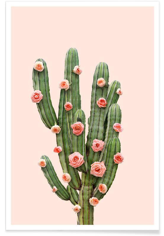 Cactusrozen foto poster